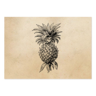Vintage 1800s Pineapple Illustration Pineapples Pack Of Chubby Business Cards