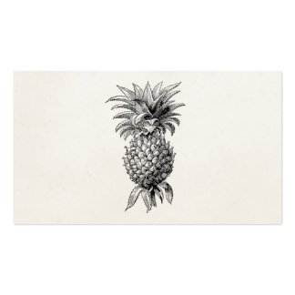 Vintage 1800s Pineapple Illustration Pineapples Pack Of Standard Business Cards