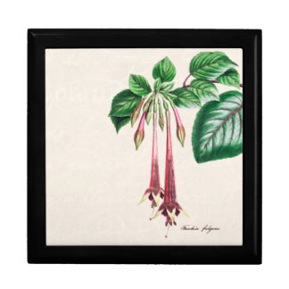 Vintage 1800s Pink Fuchsia Flower Fuschia Floral Large Square Gift Box