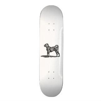Vintage 1800s Pug Dog Illustration - Dogs Skateboard