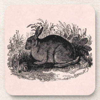 Vintage 1800s Rabbit Retro Bunny Template Rabbits Coaster