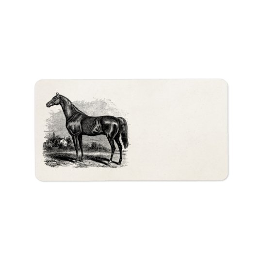Vintage 1800s Race Horse Retro Thoroughbred Horses Address Label