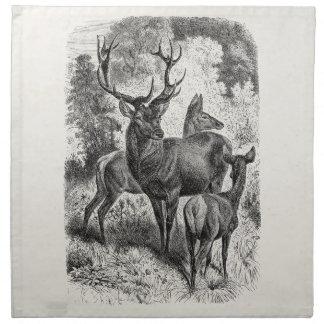 Vintage 1800s Red Deer Illustration Stag Doe Fawn Napkin