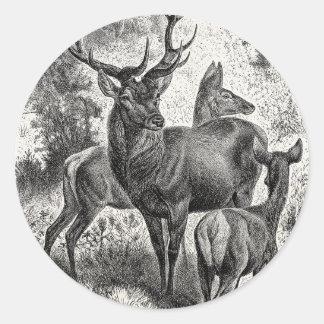 Vintage 1800s Red Deer Illustration Stag Doe Fawn Round Sticker