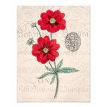 Vintage 1800s Red Flower Botany Cinquefoil Photo Print