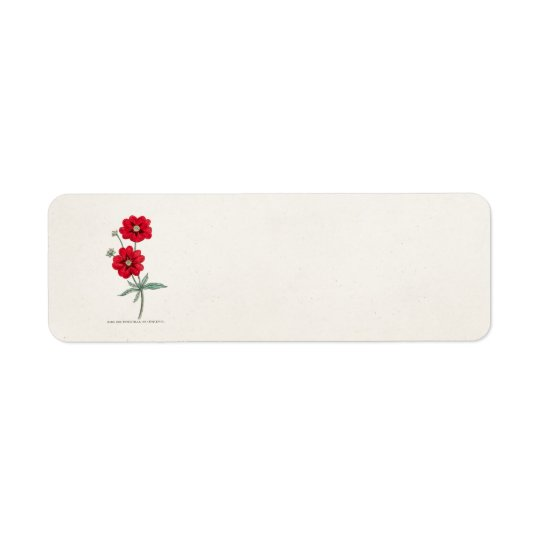 Vintage 1800s Red Flower Potentilla Cinquefoil Return Address Label