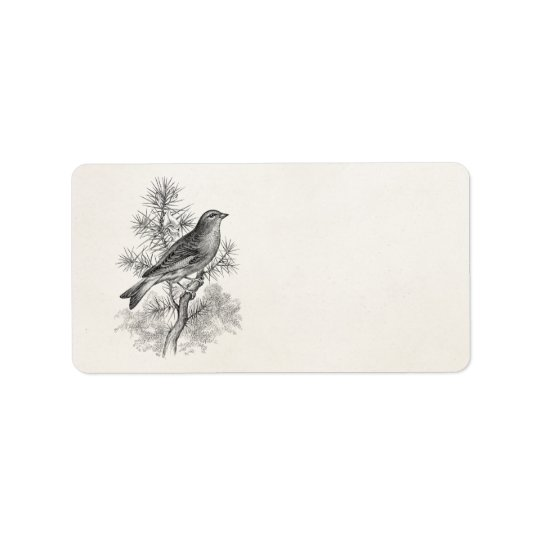 Vintage 1800s Rose Linnet Song Bird Finch Birds Address Label