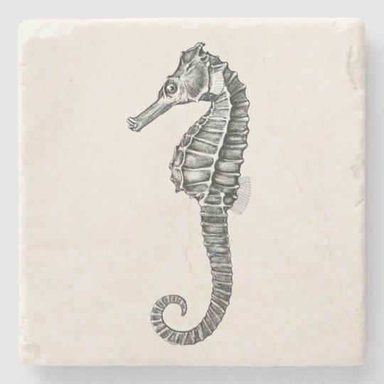 Vintage 1800s Sea Horse Ocean Seahorse Template Stone