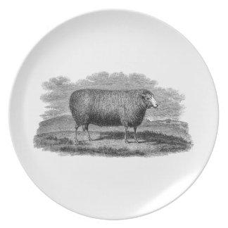 Vintage 1800s Sheep Ewe Illustration Retro Wool Plate