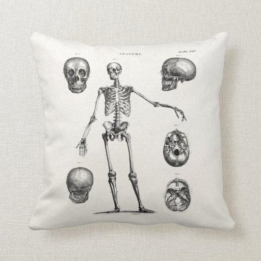 Vintage 1800s Skeleton Antique Anatomy Skeletons Throw Pillows