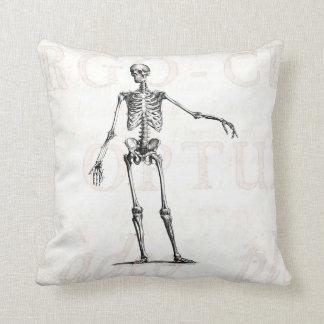 Vintage 1800s Skeleton Retro Skeletons Anatomy Cushion