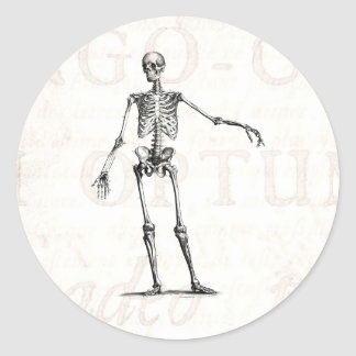 Vintage 1800s Skeleton Retro Skeletons Anatomy Round Sticker
