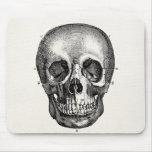 Vintage 1800s Skull Retro Skulls Skeleton
