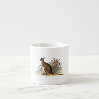 Vintage 1800s Wallaby Illustration Kangaroo Espresso Cup