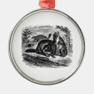 Vintage 1800s Woodchuck Retro Woodchucks Template Christmas Ornament