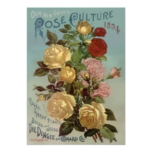 Vintage 1894 Guide to Rose Culture Custom Invite