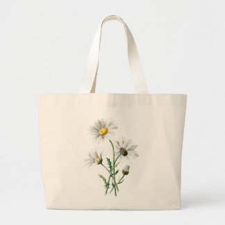 Vintage 1902 Daisies Old Wild Flower Illustration Large Tote Bag