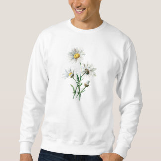 Vintage 1902 Daisies Old Wild Flower Illustration Sweatshirt