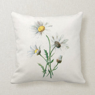 Vintage 1902 Daisies Old Wild Flower Illustration Throw Pillow