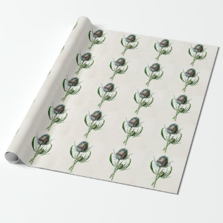 Vintage 1902 Old Scottish Thistle Wild Flower Wrapping Paper