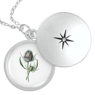 Vintage 1902 Scottish Thistle Antique Wild Flower Round Locket Necklace