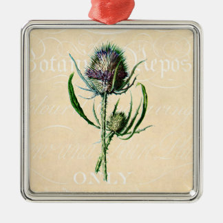Vintage 1902 Scottish Thistle Antique Wildflower Silver-Colored Square Decoration
