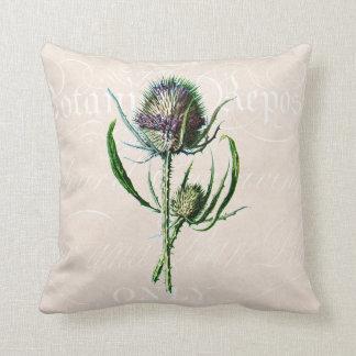 Vintage 1902 Scottish Thistle Old Wild Flower Throw Cushion