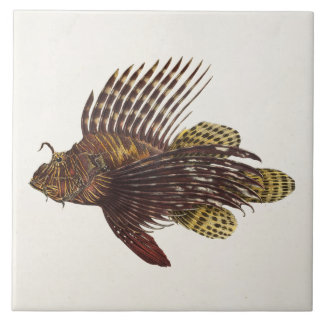 Vintage 1905 Lionfish Scorpionfish Retro Lion Fish Tile