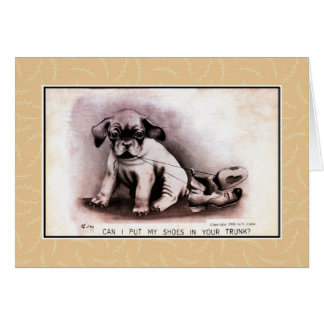 Vintage 1909 cute puppy, lovers, living together greeting card