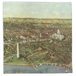 Vintage Aerial Antique City Map of Washington DC Napkins