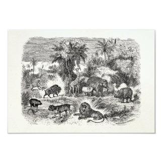 Vintage African Animals Giraffe Elephant Lion Hog 9 Cm X 13 Cm Invitation Card