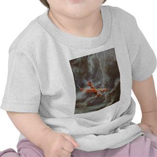 Vintage Aircraft Tee Shirt Infant
