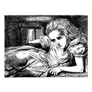 Vintage Alice in Wonderland by John Tenniel Postcard