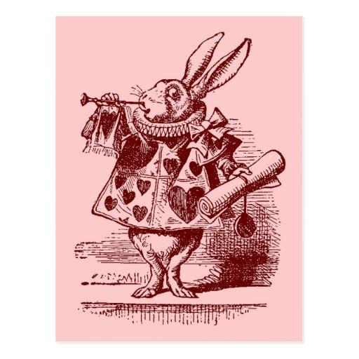 Vintage Alice in Wonderland White Rabbit Postcards