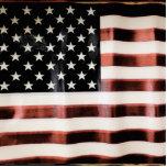 Vintage American Flag HFPHOT01 Photo Sculpture Badge