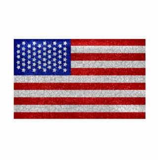 Vintage American Flag Photo Sculpture