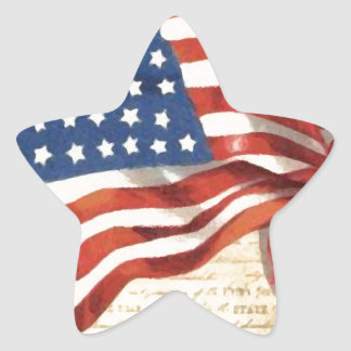 Vintage American Flag Star Sticker