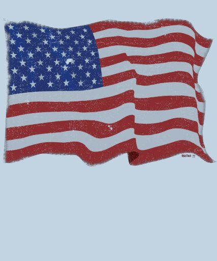 Vintage American Flag Tshirt