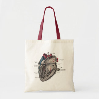 Vintage Anatomical Heart Diagram Tote Bag