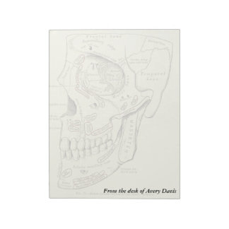Vintage Anatomy Anterolateral region of the skull Notepad