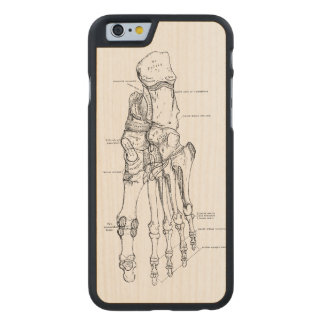 Vintage Anatomy Art Bones of the Foot Carved® Maple iPhone 6 Case