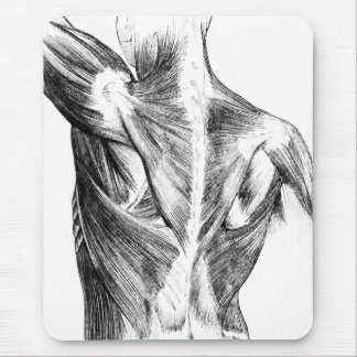 Vintage Anatomy | Back Muscles  (circa 1852) | B/W Mouse Pad
