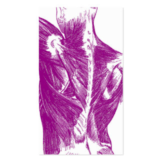 Vintage Anatomy   Back Muscles   Purple Pack Of Standard Business Cards