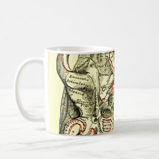 Vintage Anatomy Base of the skull external Coffee Mug