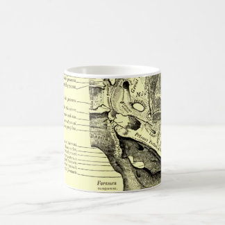 Vintage Anatomy | Base of the skull Inner surface Coffee Mug