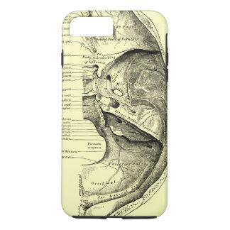 Vintage Anatomy | Base of the skull Inner surface iPhone 8 Plus/7 Plus Case