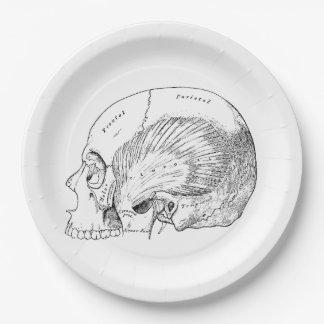 Vintage Anatomy Drawing Human Temporal Muscle Paper Plate