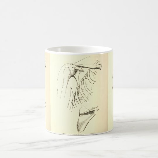 Vintage Anatomy | Scapula (circa 1852) Coffee Mug