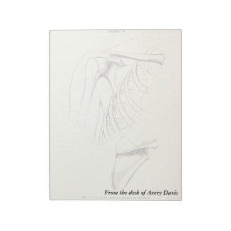 Vintage Anatomy | Scapula (circa 1852) Memo Notepad
