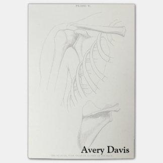 Vintage Anatomy | Scapula (circa 1852) Post-it® Notes